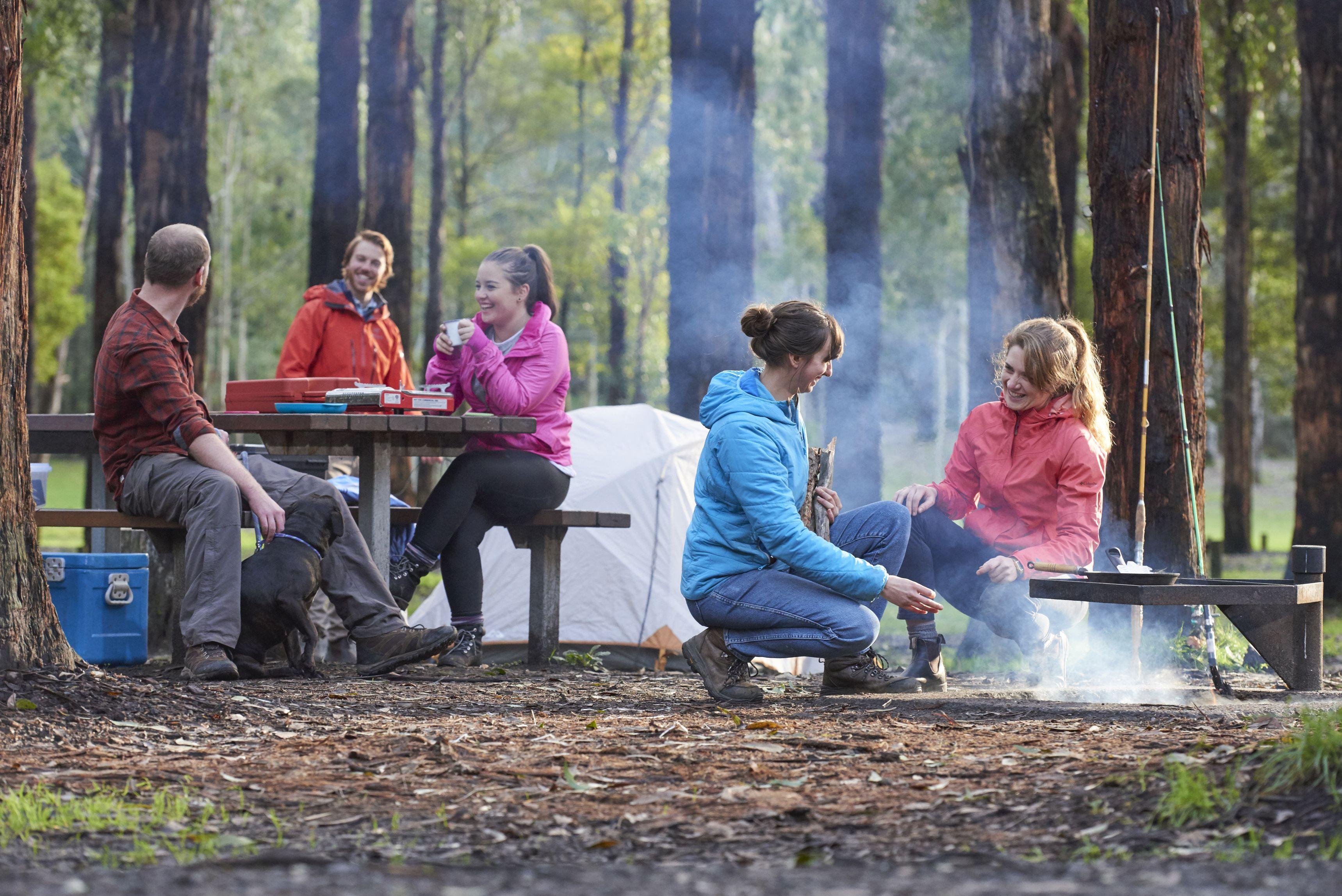 Camping Dandos