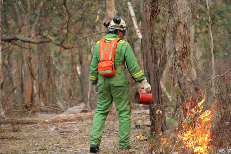managing bushfire risk