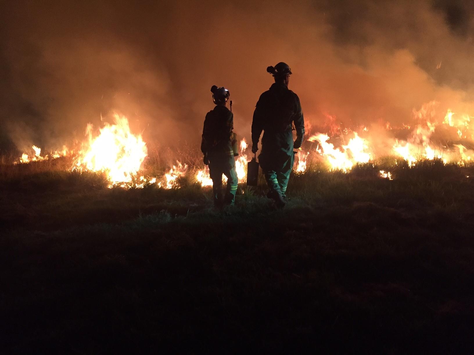 carrum downs bushfire