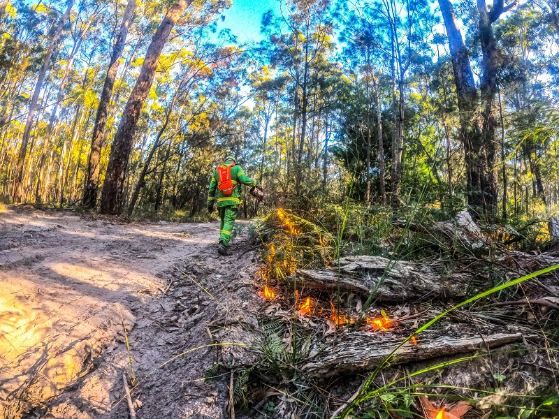 Reducing bushfire risk in the Snowy district